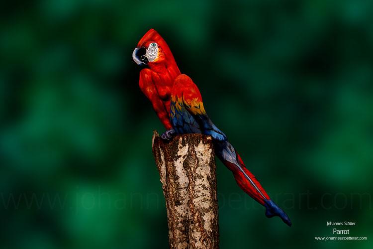 DE L'ART ...OU DU COCHON ? - Page 2 Parrot-web