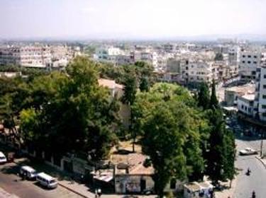 أكبر مكتبة أثرية في سورية 38578