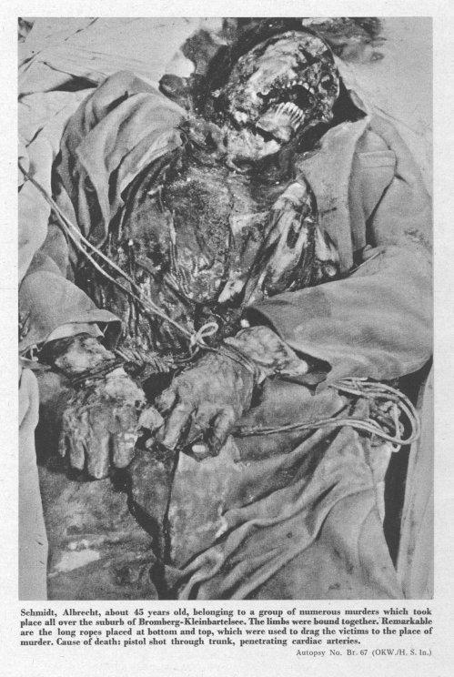 Быдгощ-Бромберг на Рейберте P280_30p