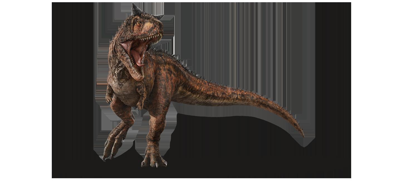 Quel est votre dinosaure préféré ? 1440x651_0009_carnotaurus