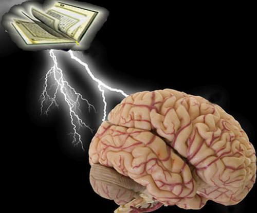 فوائد حفظ القرآن Brain-quran1