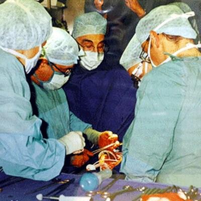 سبحان الله أحدث دراسة علمية أن القلب يقوم بتجديد خلاياه Heart-cell-2