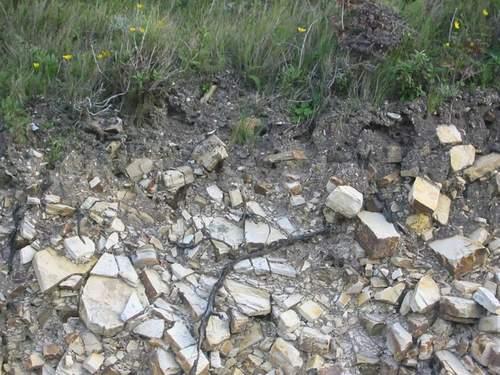 بحث عن اسرار التراب Soil_111