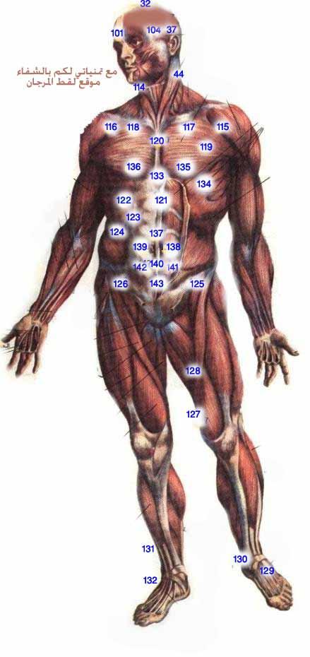 الطب الشعبى    الحجامة \  الكى  *  القصد   ( ملف كامل ) Image002