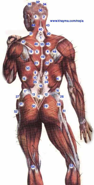 الطب الشعبى    الحجامة \  الكى  *  القصد   ( ملف كامل ) Image003