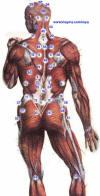 الطب الشعبى    الحجامة \  الكى  *  القصد   ( ملف كامل ) Image003_small