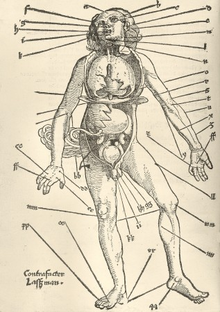 الطب الشعبى    الحجامة \  الكى  *  القصد   ( ملف كامل ) - صفحة 2 Bloodletting_diag