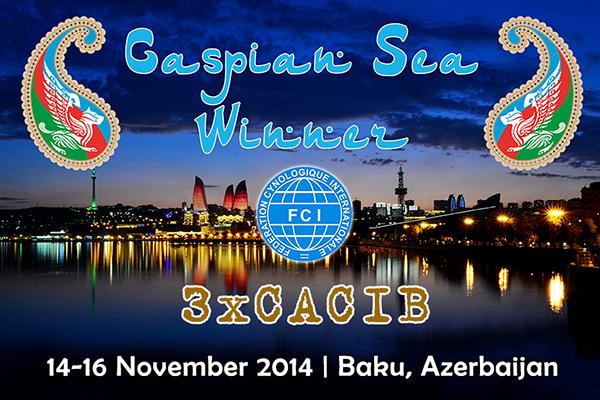 14-16 Ноября 2014  CASPIAN SEA WINNER 3XCACIB Banner_caspian_sea2014