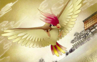 What are your favorite animation errors? Pidgeotto