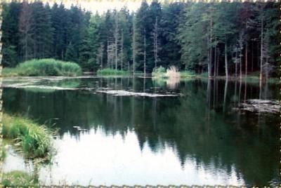Prođoh Bosnom kroz gradove :) Jezero_Gorsko_oko