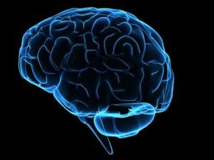حقائق علمية عن جسم الإنسان ، غريبة و طريفة 176-300x225