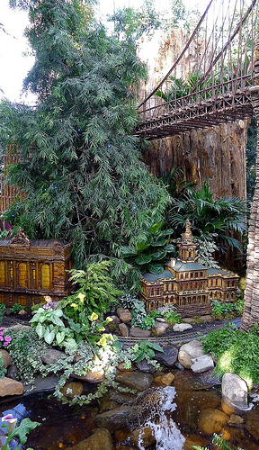 الحديقه النباتيه فى نيويورك امريكا  352