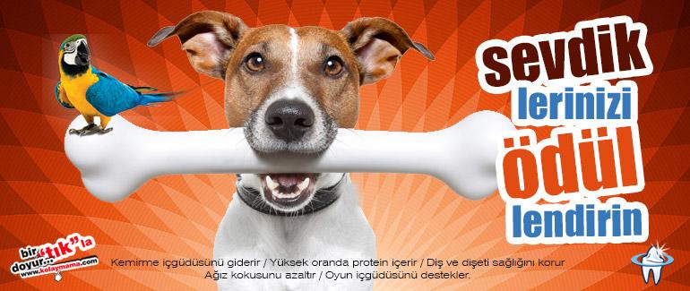 Evcil hayvan ürünleri satış sitesi - Kolaymama.com Odulbanner