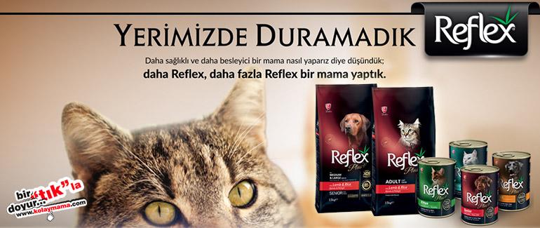 Evcil hayvan ürünleri satış sitesi - Kolaymama.com Reflex-banner