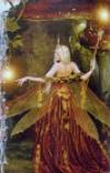 Волшебное царство фей. Верче Дорин 8339