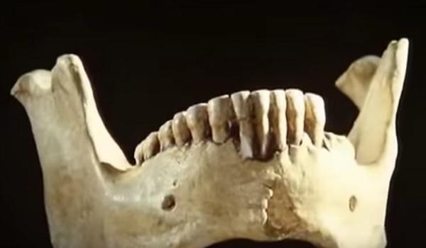 Arheoloski ponalasci kod planine Sinaj.    Skelet