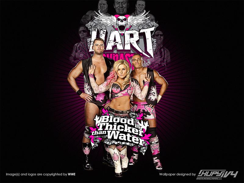 صور مصارعة صور مصارعين جديدة صور خلفيات مصارعة 2013 Hart-dynasty-wallpaper-800x600