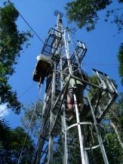 أنقى مناطق العالم هواءً في غابات الأمازون Kw-1fa7c830ca