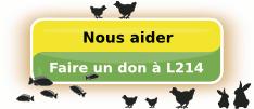 L214 émission ARTÈ à voir 27MARS Bouton-don