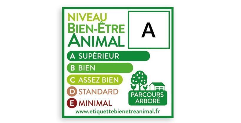 Poulet de chair  Carrefour et Système U adoptent l'étiquetage du bien-être animal Etiquette-A-860x497-k9YG-U102558569946pdE-860x420%40lafranceagricole.fr