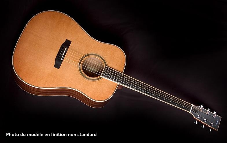 Luthier Jan Stovicek, marque BSG, banc d'essai du modèle D10F Bsg-d10f-entier
