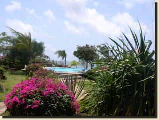 La Papaya Resort - Malindi Albergo02