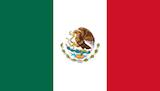 Les Filles sur la grille en F1 - 2015 Mexique