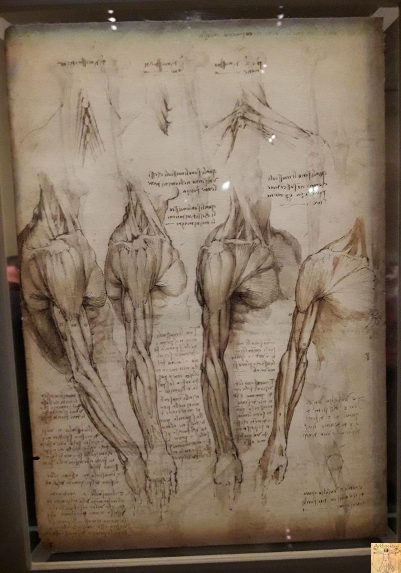 [75 - FR] : 2020-01-22 : Exposition Léonard de Vinci - Louvre - Paris 101