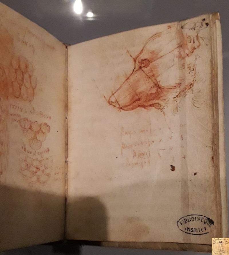 [75 - FR] : 2020-01-22 : Exposition Léonard de Vinci - Louvre - Paris 106