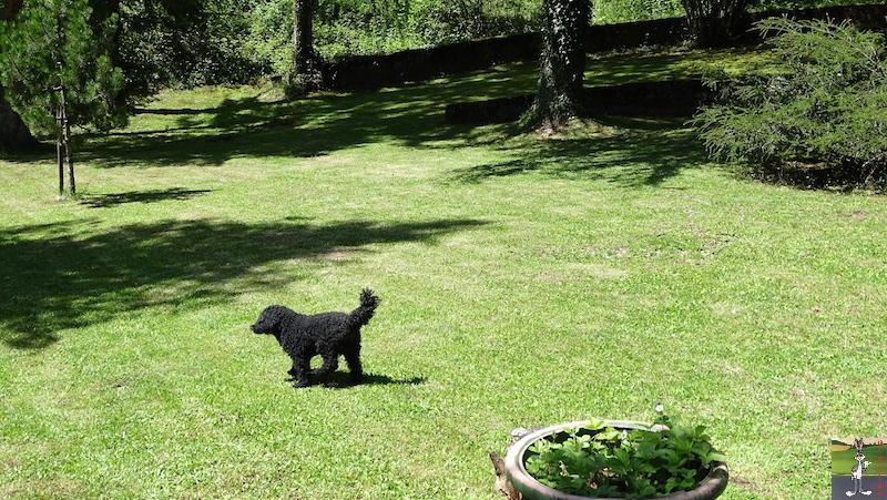 [39] 2020-05-09 : Balade dans le parc à la maison à La Mainmorte 2020-05-09_balade_parc_maison_05