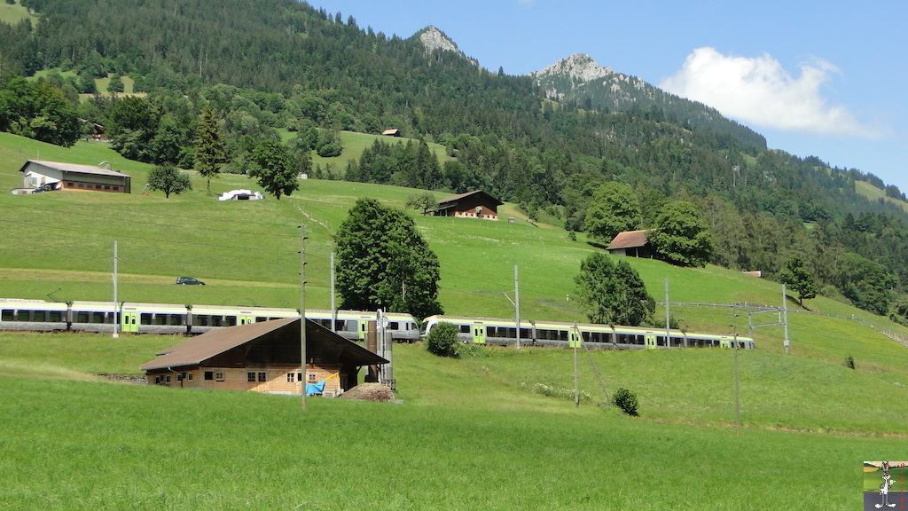 Mes photos de trains en Suisse 002_2012-07-14_Darstetten_01
