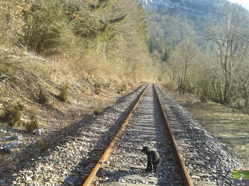 [39-FR] : 2019-01-04 : Vestiges ligne St-Claude (39) <--> Oyonnax (01) 2019-01-04_train_stc_O_03