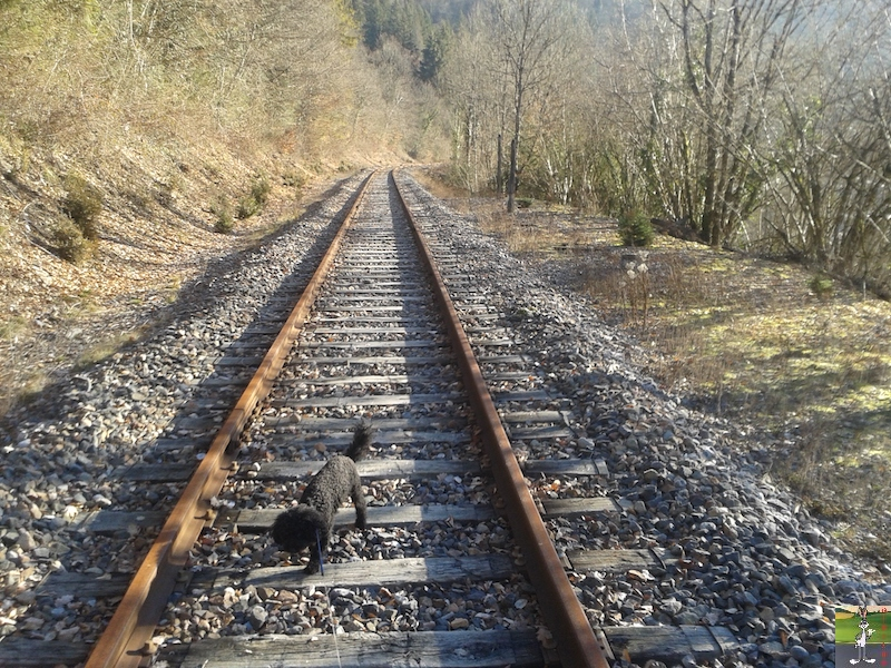 [39-FR] : 2019-01-04 : Vestiges ligne St-Claude (39) <--> Oyonnax (01) 2019-01-04_train_stc_O_04