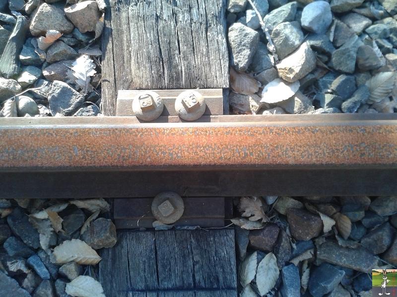 [39-FR] : 2019-01-04 : Vestiges ligne St-Claude (39) <--> Oyonnax (01) 2019-01-04_train_stc_O_05