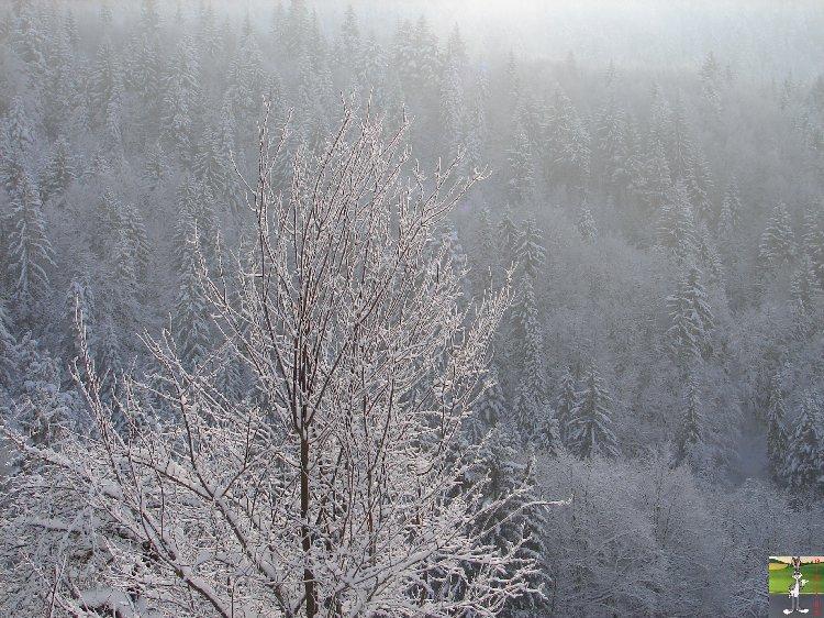 """2010-01-10 : Les """"vrais"""" 15 cm de neige à La Tanière (39) 2010-01-10_neige_02"""