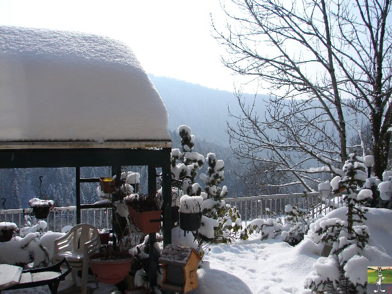 2010-02-13 : Neige à la Mainmorte (39) 2010-02-13_neige_01
