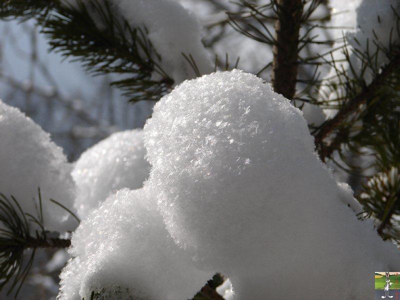 2010-02-13 : Neige à la Mainmorte (39) 2010-02-13_neige_02