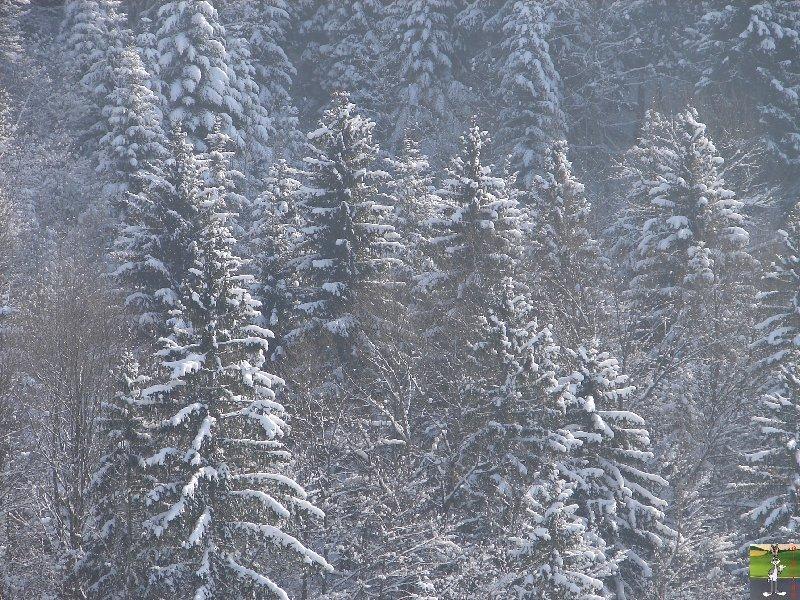 2010-02-13 : Neige à la Mainmorte (39) 2010-02-13_neige_04