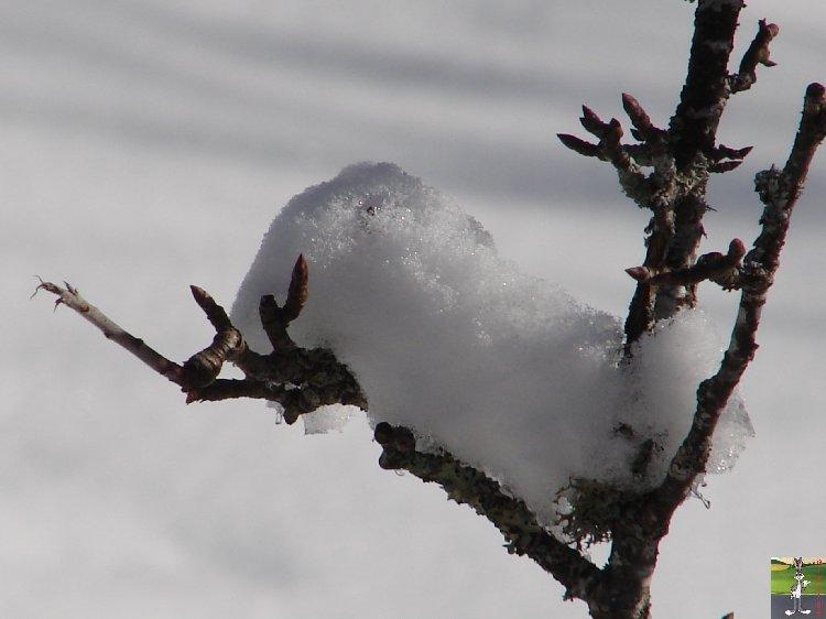 2010-02-21 : Neige à la Mainmorte (39) 2010-02-21_neige_05