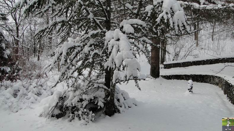 2010-11-28 : Neige à La Mainmorte (39) 2010-11-28_neige_01