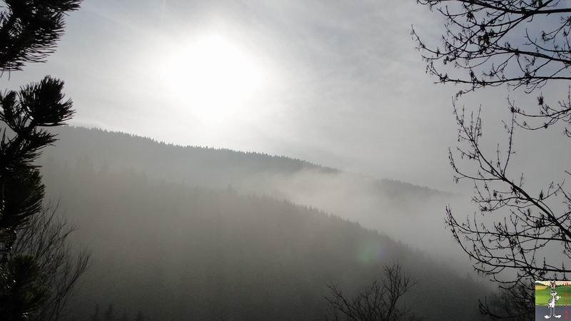 2011-01-30 : Soleil et brouillard à la Mainmorte (39) 2011-01-30_brouillard_soleil_01
