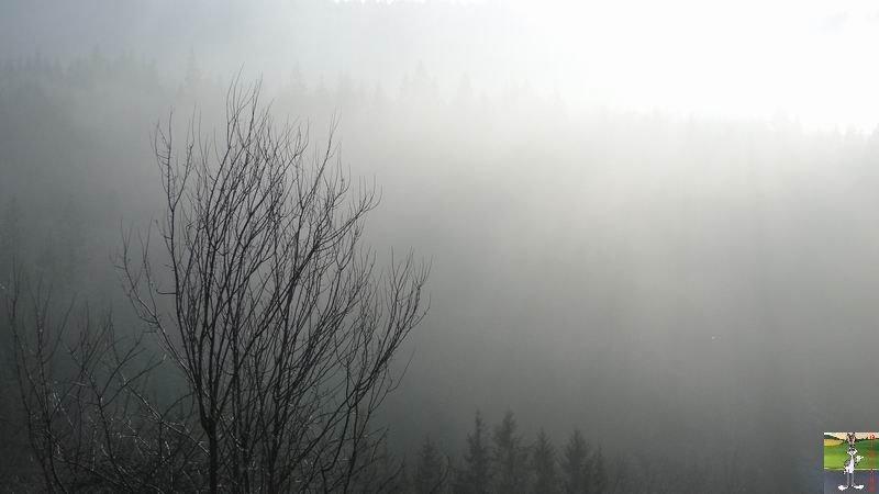2011-01-30 : Soleil et brouillard à la Mainmorte (39) 2011-01-30_brouillard_soleil_03