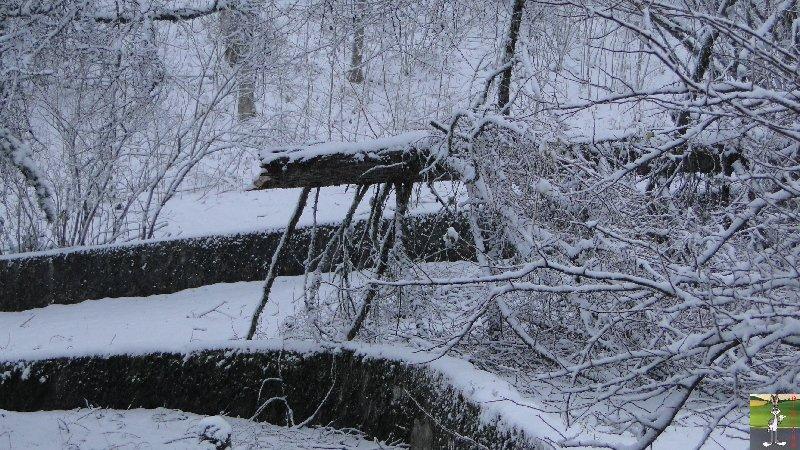 2011-12-17 : Neige à La Mainmorte (39)  2011-12-17_neige_02