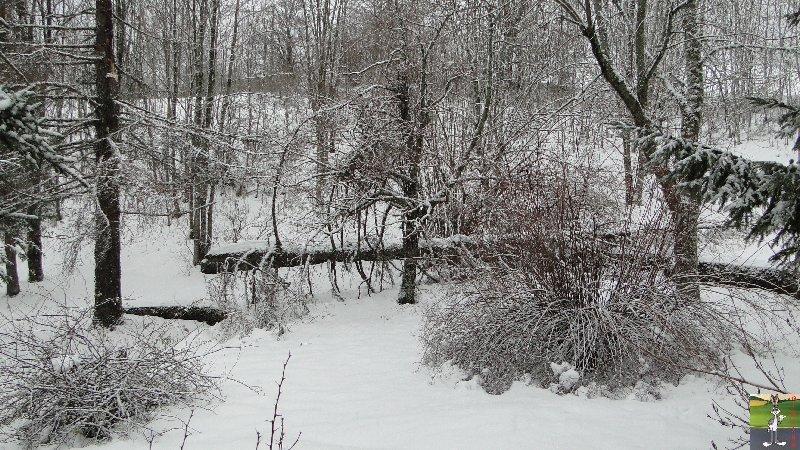 2011-12-24 : Neige et dégats à La Mainmorte (39)   2011-12-24_arbre_casse_02