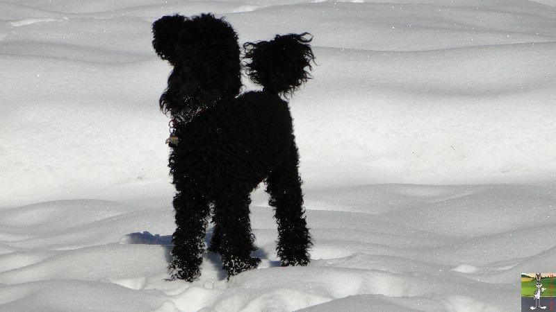 2011-12-25 : Neige et soleil à La Mainmorte (39)   2011-12-25_neige_06