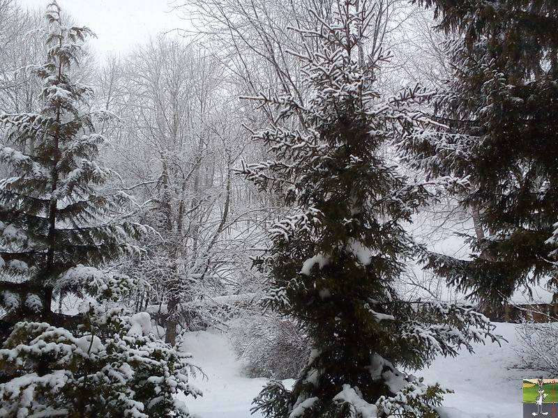2012-02-19 : Neige à La Mainmorte (39)  2012-02-19_neige_08
