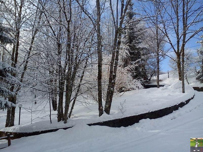 2012-02-19 : Neige à La Mainmorte (39)  2012-02-19_neige_11