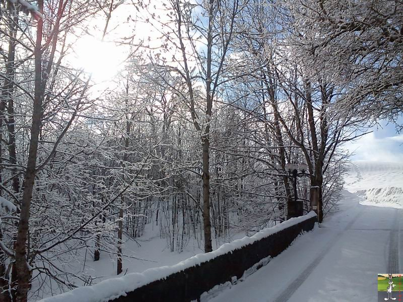 2012-02-19 : Neige à La Mainmorte (39)  2012-02-19_neige_14