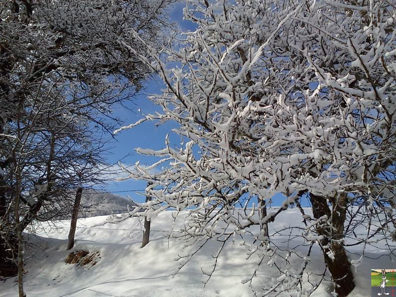 2012-02-19 : Neige à La Mainmorte (39)  2012-02-19_neige_15