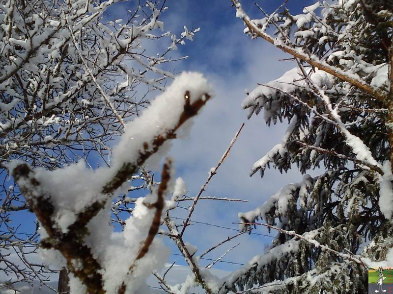 2012-02-19 : Neige à La Mainmorte (39)  2012-02-19_neige_16
